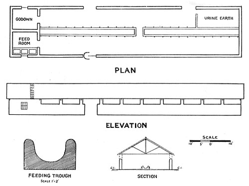 Next Cow shed plans designs | Nurs